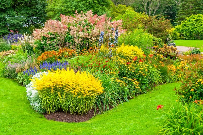 Example of layering plant material in garden bed