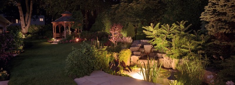 pond garden night