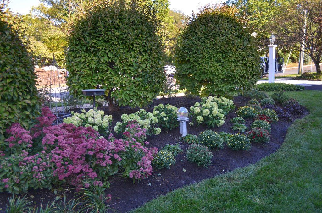 Pretty Garden Design Tode Landscape
