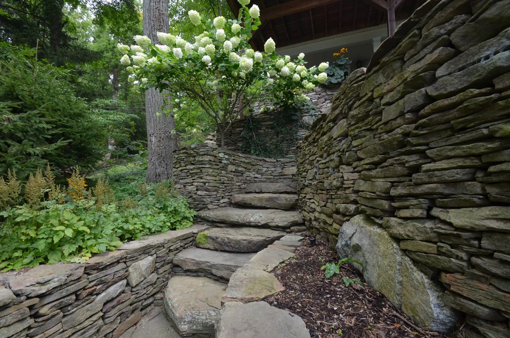 Stone Walls Steps And Plants