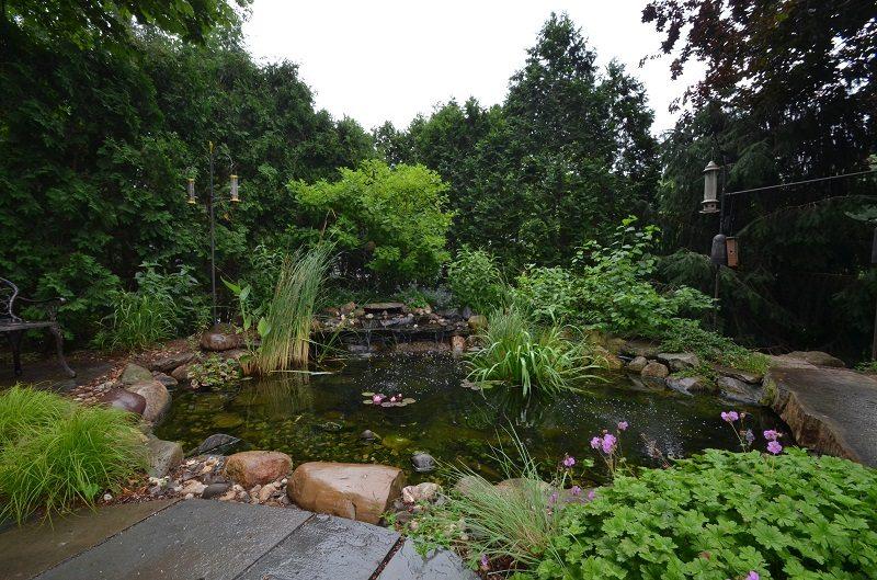 pond hardscape garden landscaping
