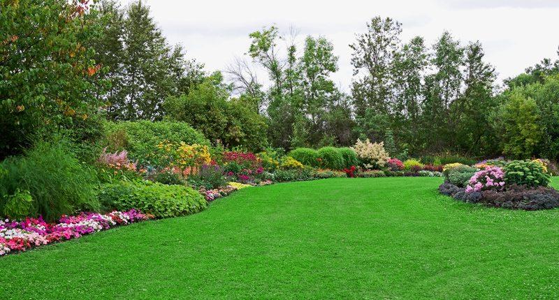 Custom Landscaping Design