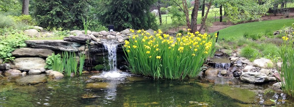 Landscape -Pond with Waterfall by Tode Landscape Contractors